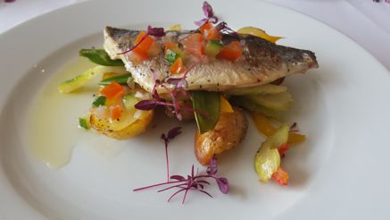 Oven roasted trout with crispy potatoes